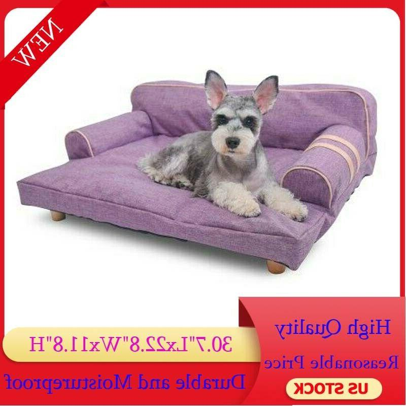 pet dog violet couch bed chair luxury